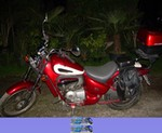 Production (Stock) Aprilia RedRose Models, Uploaded for: Willy il Lupo 1994 Aprilia RedRose50