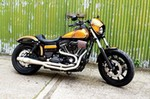 Production (Stock) Harley-Davidson Dyna Low Rider, Harley-Davidson Dyna Low Rider - Harley-Davidson Dyna Lowrider S FXDLS Custom – Harley ... Source: <a href='https://harleydavidsonbikepics.com/harley-davidson-dyna-lowrider-s-fxdls-custom/' target='_blank'>https://harleydavidsonbikepics.com/...</a>