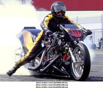 Racing Harley-Davidson Unknown (HD), Harley Davidson - Unknown (HD) - 222