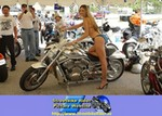 Production (Stock) Harley-Davidson VRSC, V-Rod Challenge,Penthouse Girls