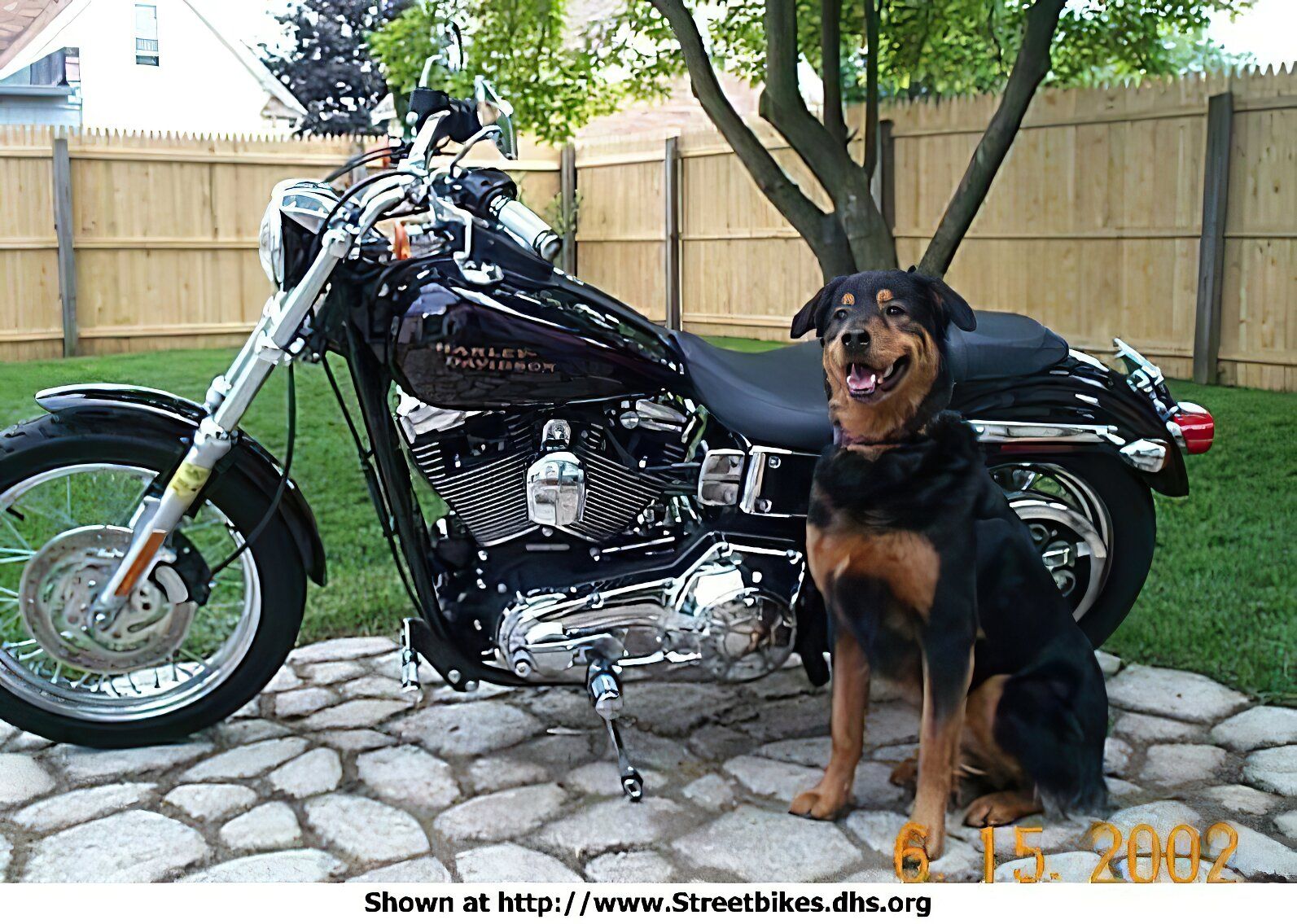 Harley-Davidson Unknown (HD) - ID: 1455