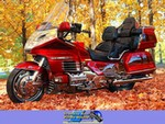 Production (Stock) Honda GL/Goldwing Models, 2000SE GL1500 25th Anniversary Edition. Owned by Bill Marshall