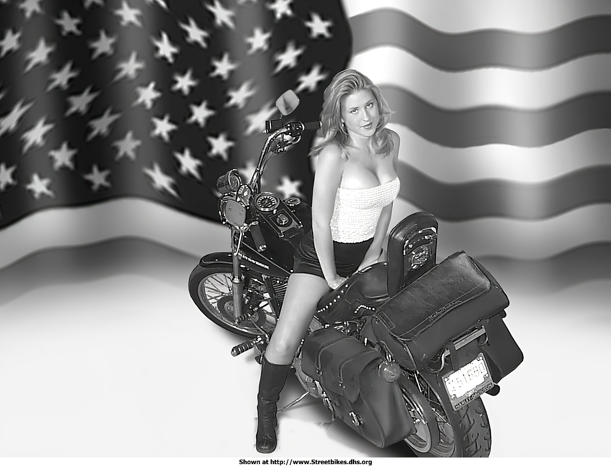 Harley-Davidson Unknown (HD) - ID: 1019