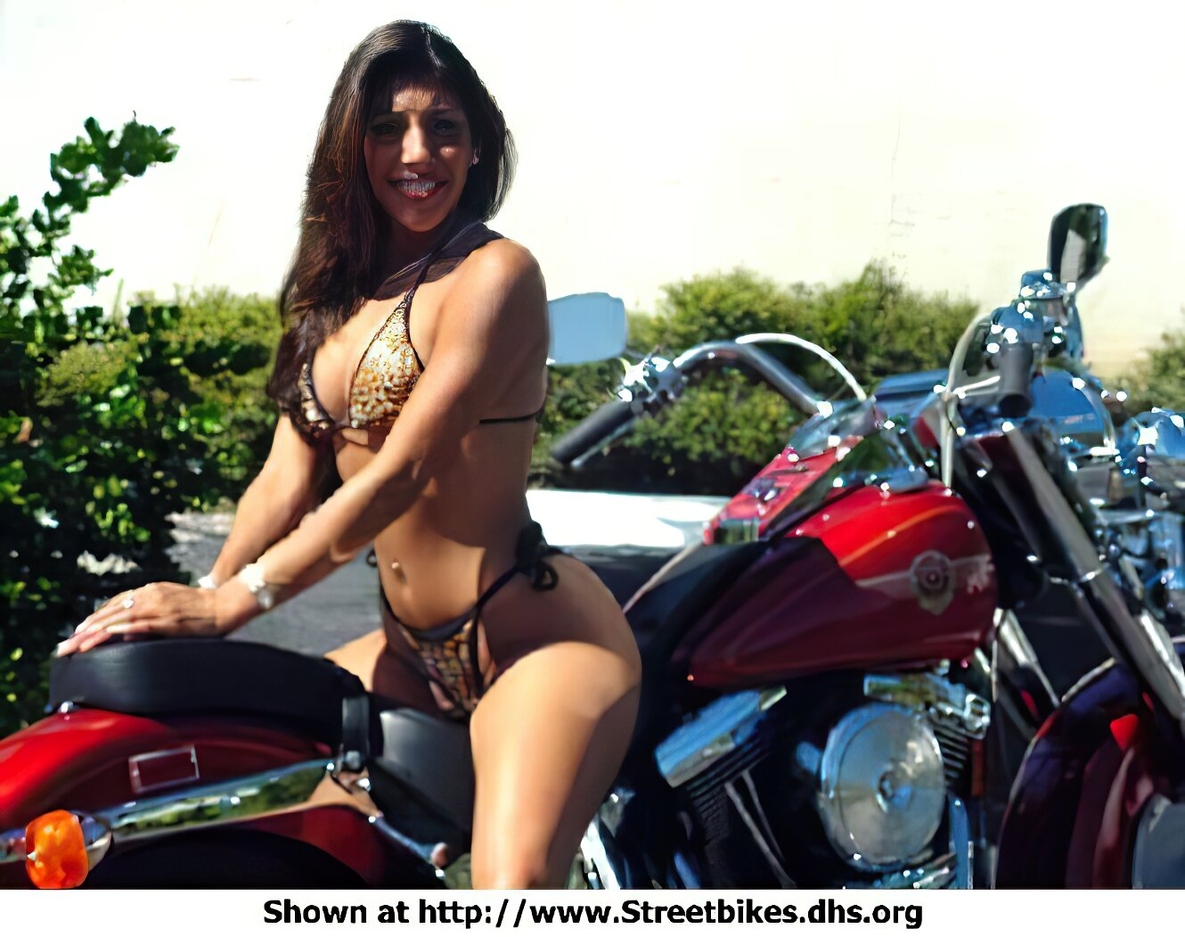 Harley-Davidson Unknown (HD) - ID: 1078