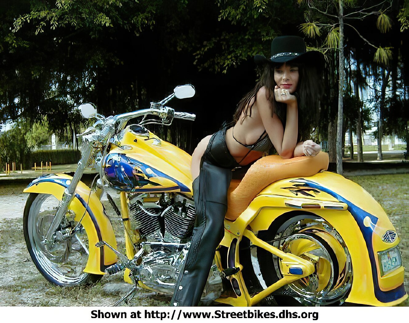 Harley-Davidson Unknown (HD) - ID: 1092