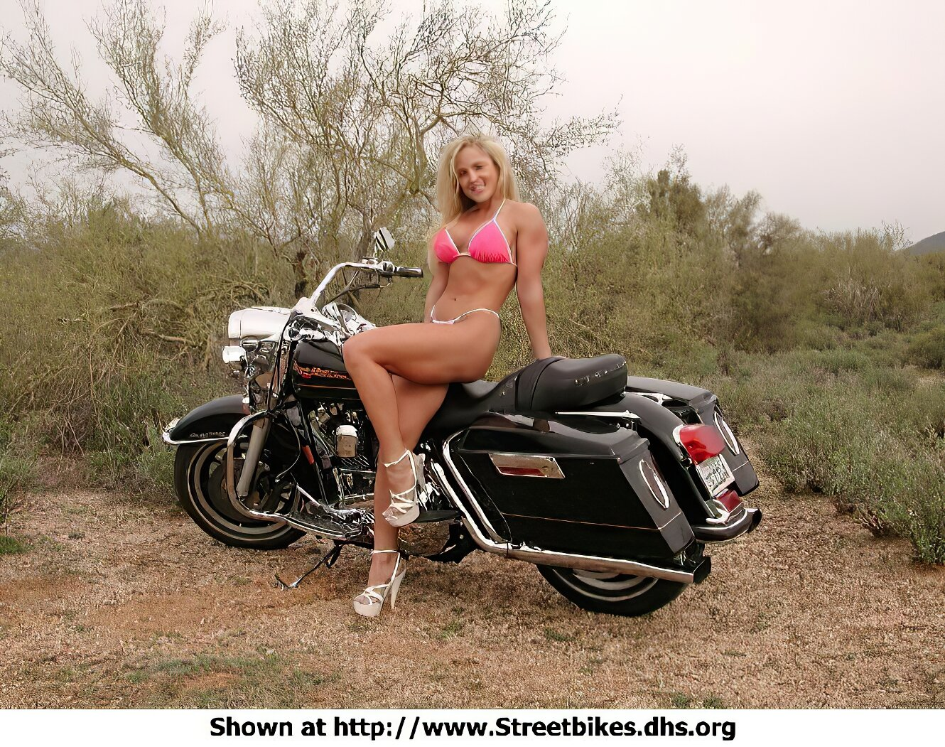 Harley-Davidson Unknown (HD) - ID: 1410