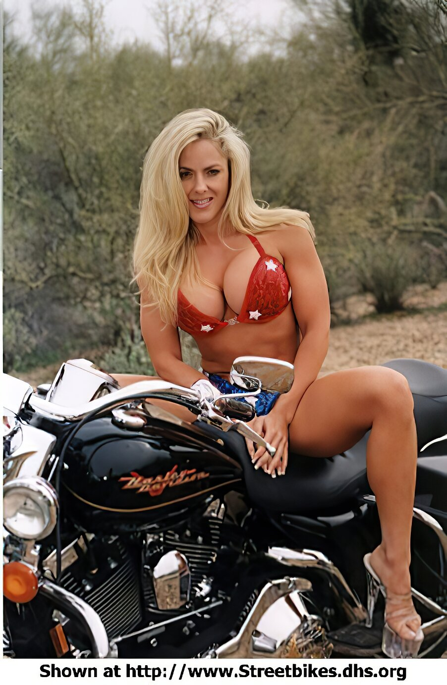 Harley-Davidson Unknown (HD) - ID: 1416