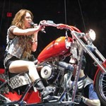 Women Harley-Davidson Softail, Hot babe sitting on a Harley Davidson/Softail motorcycle. a person wearing a red and black Harley-Davidson Softail Streetbike